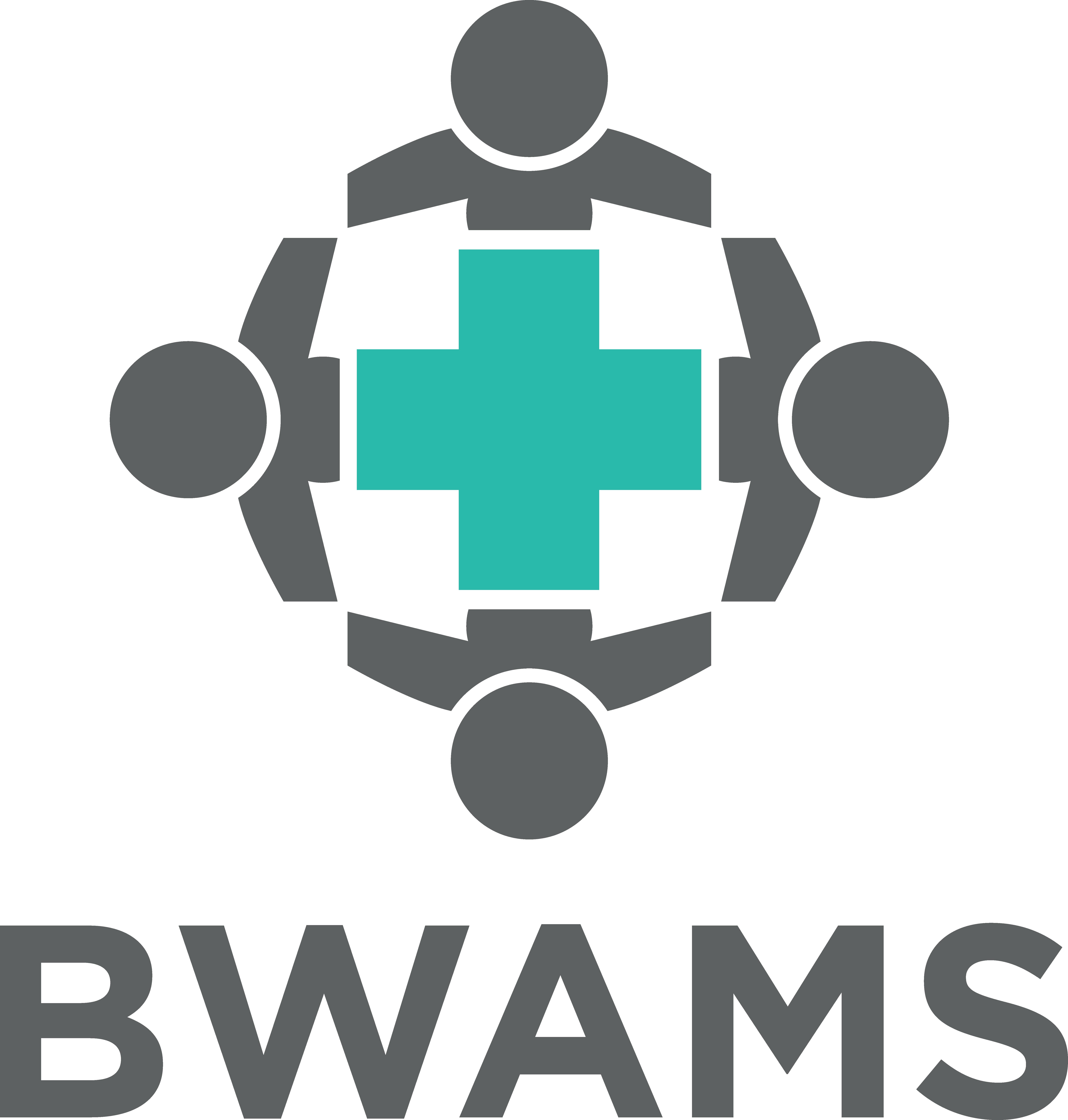 BWAMS logo